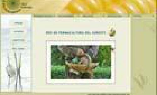 Diseño web Red de Permacultura del Sureste