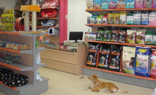 Vista interior tienda