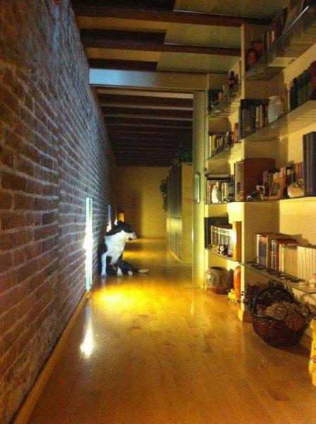 NQ Disseny, reformas y diseño en Barcelona