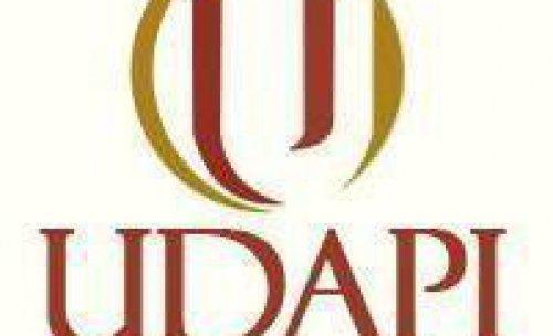 Udapi & Asociados
