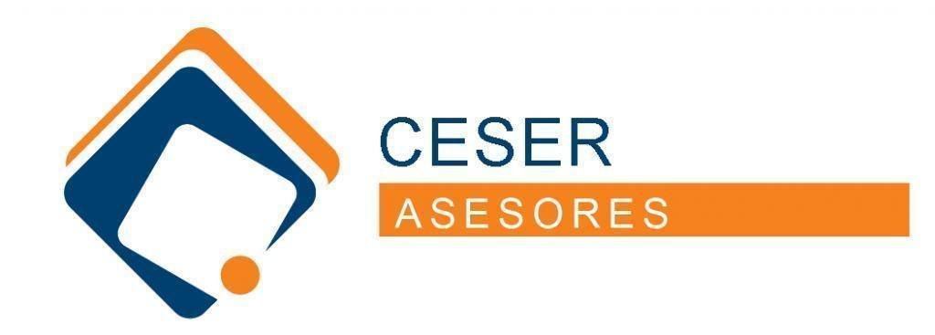 ceser-asesores.com