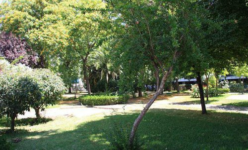 Tecnijardín, jardinería en Sevilla