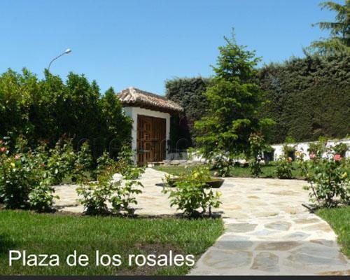 Plaza de los rosales