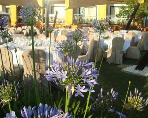 Celebra vuestra boda al aire libre