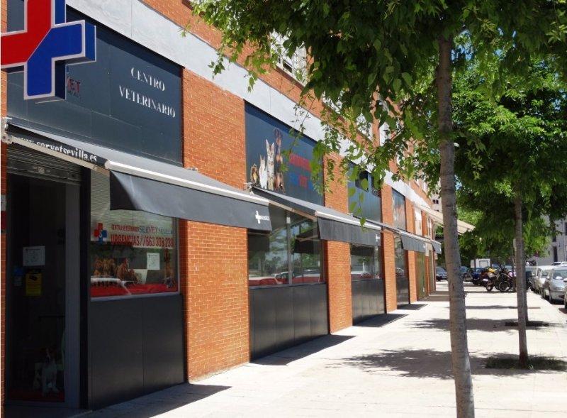 Centro Veterinario Servet Sevilla