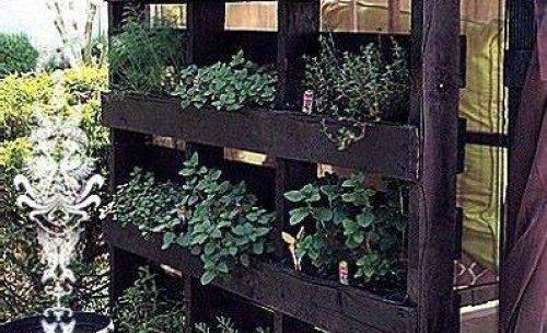 jardineria cotonat service
