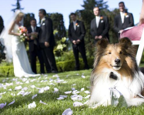 Vuestra esencia en cada rincón de vuestra boda...