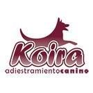 Logotipo KOIRA Educación Canina en Valencia