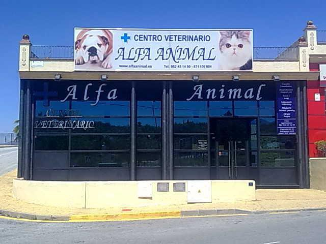 Centro Veterinario Alfa Animal