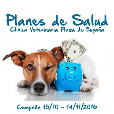 Desde el 15 de octubre al 14 de noviembre está activa nuestra campaña de Planes de Salud, a través de la cual puedes ahorrar en servicios veterinarios de tu mejor amigo.