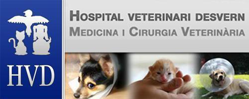 Hospital Veterinari Desvern