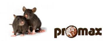 Promaxsa